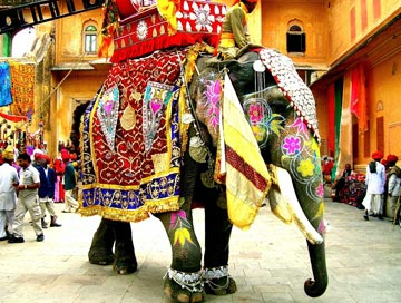 colorful rajasthan tour India